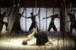 В Нью-Йорке открылись двухнедельные гастроли Мариинского театра