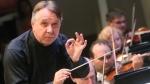 Музыканты просят приравнять правительственный грант к президентскому