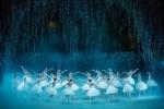 В Перми танцуют новую постановку «Лебединого озера»